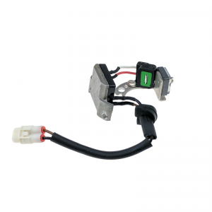 Ignition Module for Joyner 650 Sand Spider, Commando & other buggies